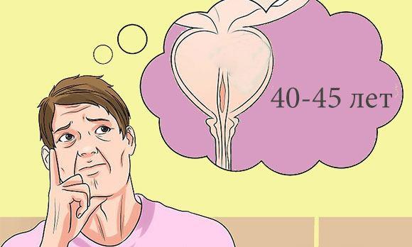 Простата у мужчины после 40-45 лет