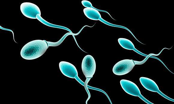 Агглютинация спермиев