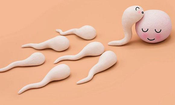 Что такое агглютинация в спермограмме - причины и лечение